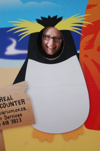 Erica's face on a rockhopper penguin