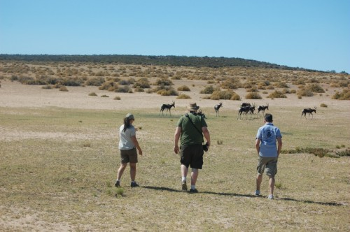Simone accompanies Joel and Rand in their attempt to sneak up on a herd of springbok
