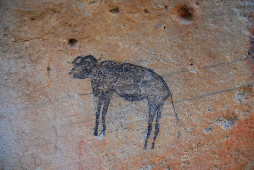 Rock art (a buffalo)