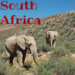 south_africa_thumb