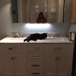 The Saga of the Bathroom Remodel