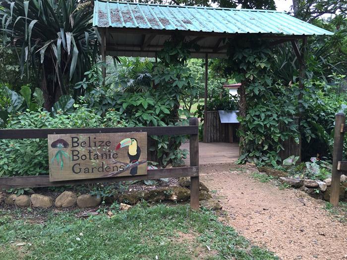 belize_botanic_gardens