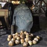 A Coconut Break