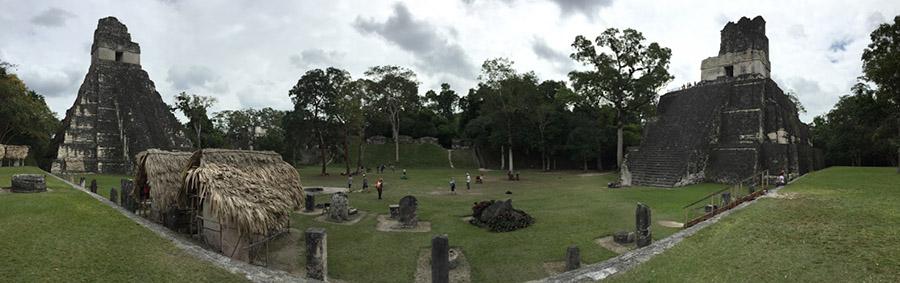 jaguar_panorama